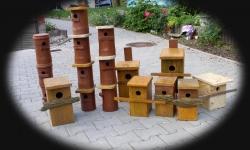 Výroba ptačích budek