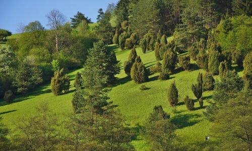 Kosení přírodní památky U Hamrů