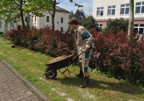 Realizace zahradnických opatření v sídle Kraje Vysočina